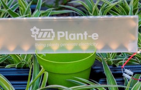 Hartman Werkt - Nieuwe website van Plant-e